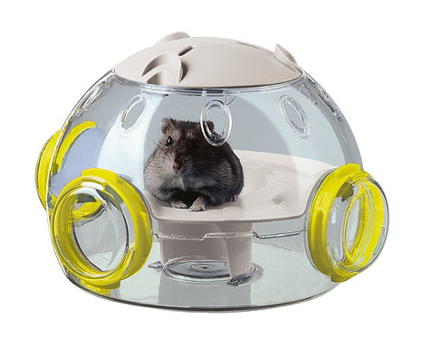LAB MODULES FOR HAMSTERS