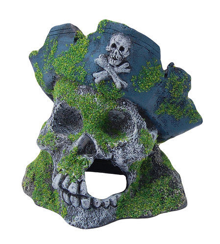 15CM SKULL WITH MOSS