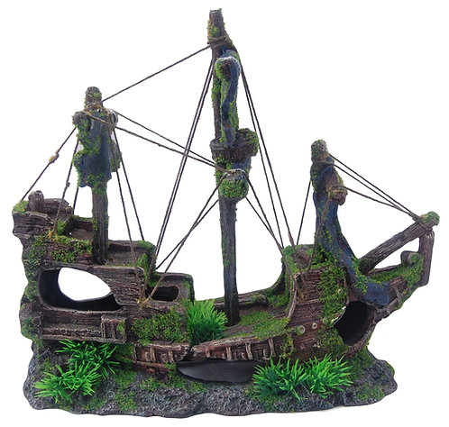 32CM SAILING SHIP WITH MOSS