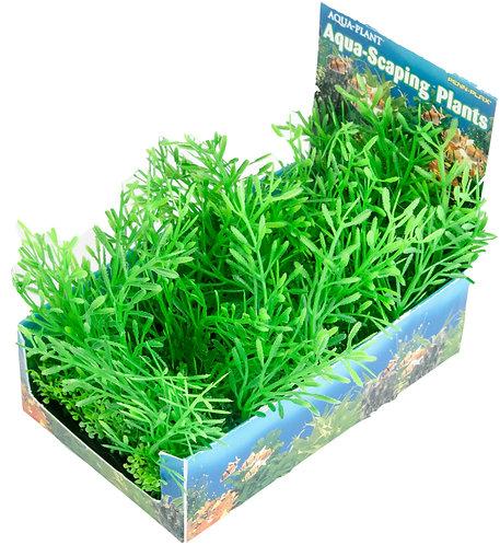 LRG CLUBMOSS BUNCH PLANT