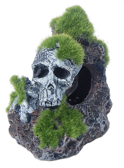 9CM SKULL WITH MOSS 2PC