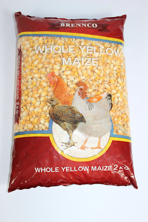 BRENNCO WHOLE YELLOW MAIZE 10x2kg