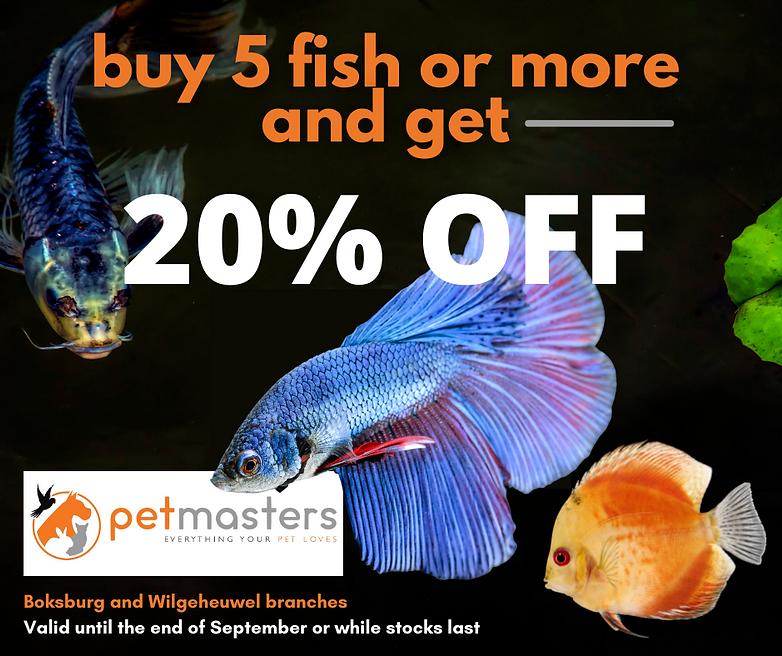 PET MASTERS FISH 17 SEPT 1 (3).png