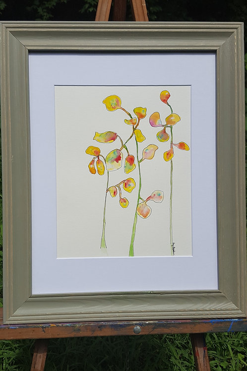 Sunny Moneyplant original framed watercolor painting, 9x11""