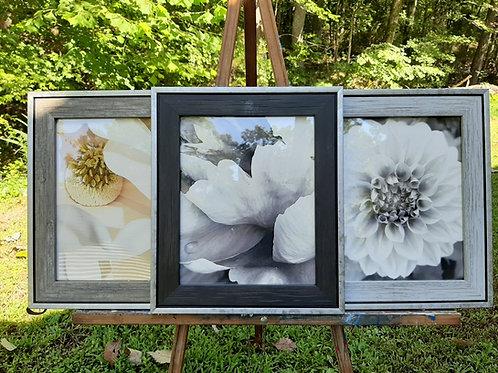 "Flower Triptych framed photo set, 11x13"""
