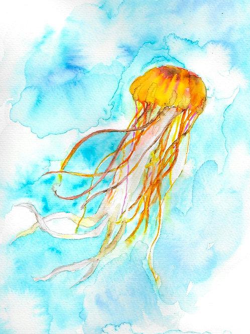 "Orange Jellyfish, matted watercolor print, 11x14"""