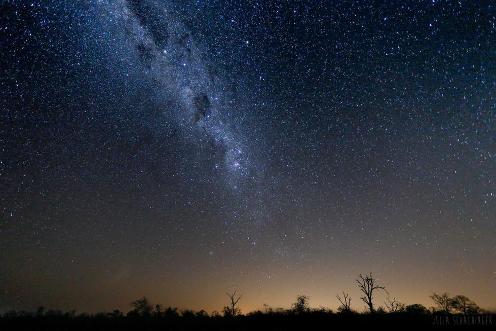 Star landscape - cool straight_.jpg