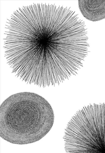Pollen countNo.3