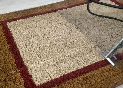 Professional Rug Cleaning Company