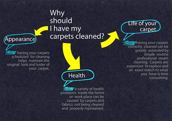 Professional Carpet Cleaners Warrington