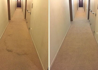 Hotel Carpet Cleaning Company