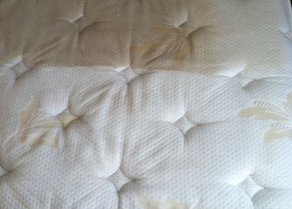 Heat Extraction Mattress Cleaning Company