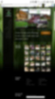 Screenshot_20190409-140050_Chrome.jpg