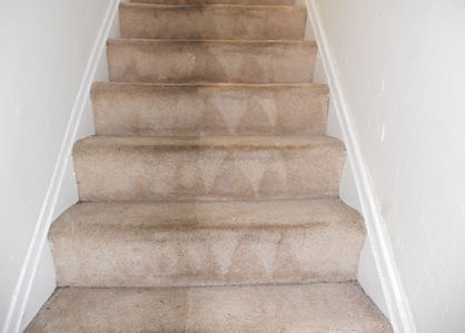 Professinal Stairs Carpet Cleaners