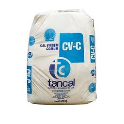 Cal-de-pintura-Tancal.png