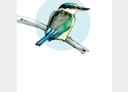 Mini Card - Kingfisher