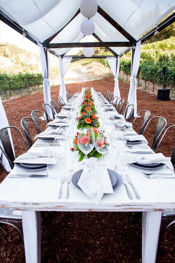 fantesca-estate-winery-b03scFWFXlA-unspl
