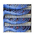 cat-6-cable-250x250.jpg