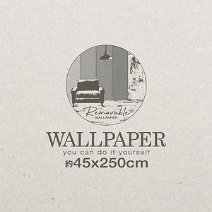 ウォールペーパー250_BOXロゴ.jpg