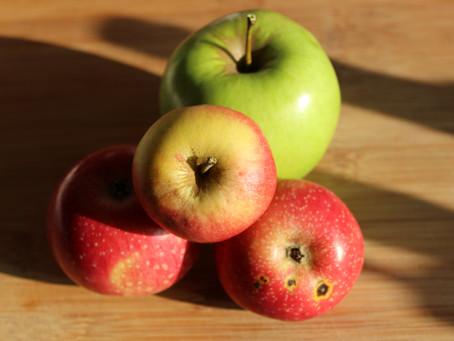 Vinagre de maçã caseiro