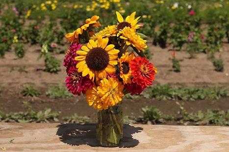 Van Houtte Farms Flower Jar