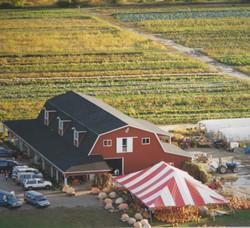 Farm in 1992