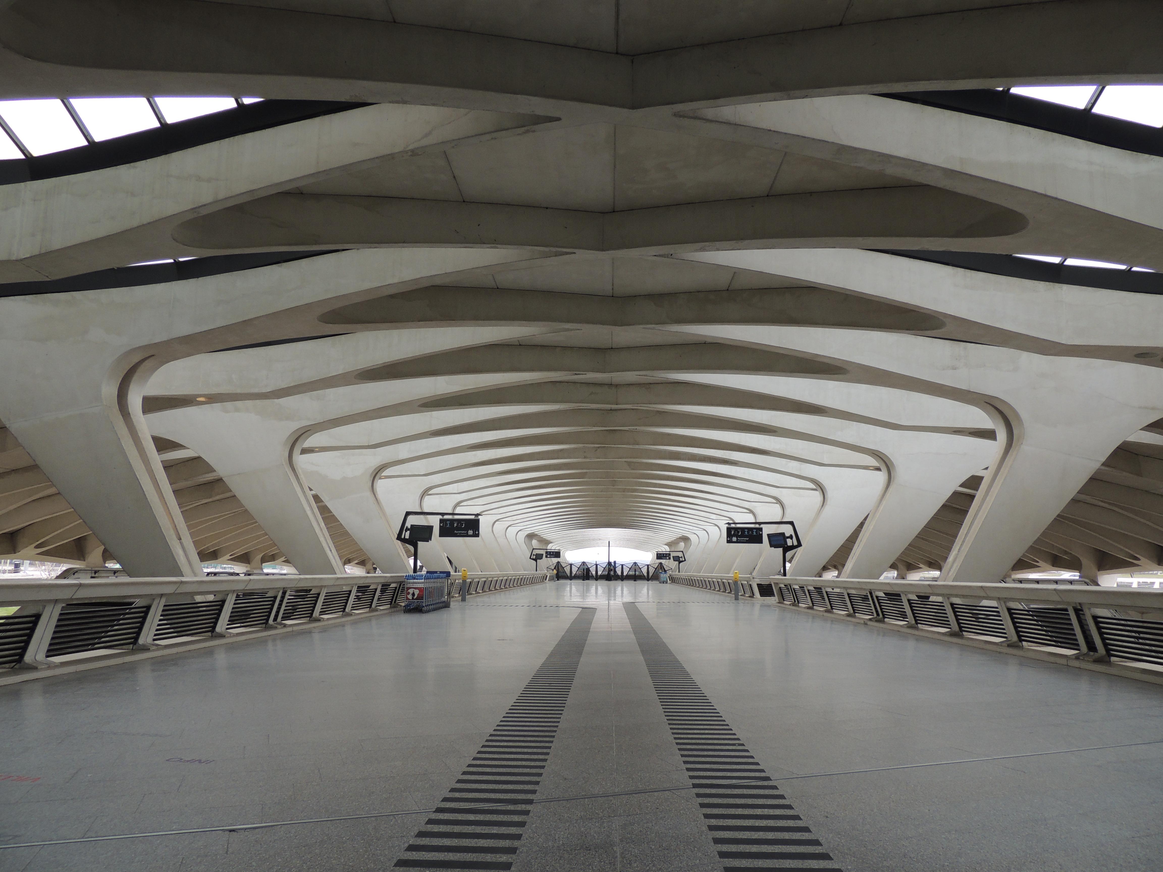 Gare de Liège-Guillemins, France
