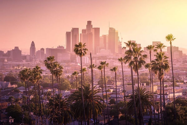 skyline-los-angeles-california-usa-shutt