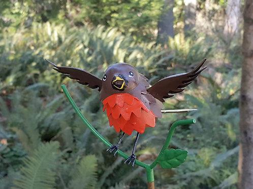 BIRD: Robin