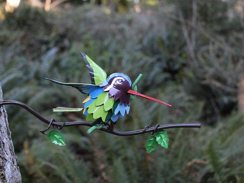 BRANCH: White-eared Hummingbird