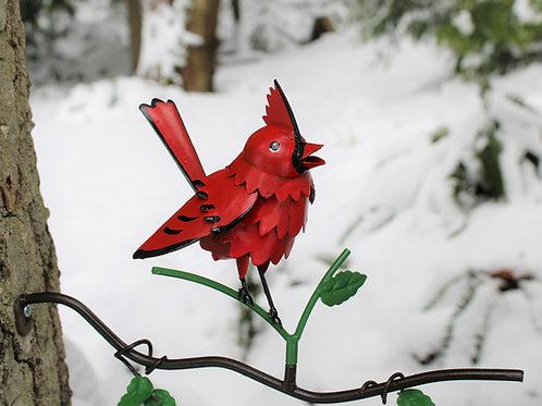 BRANCH: Cardinal