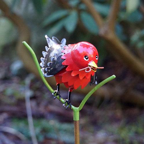 BIRD: Scarlet Tanager