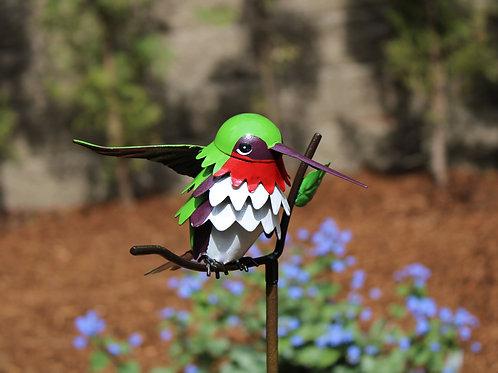BIRD: Ruby-throated Hummingbird