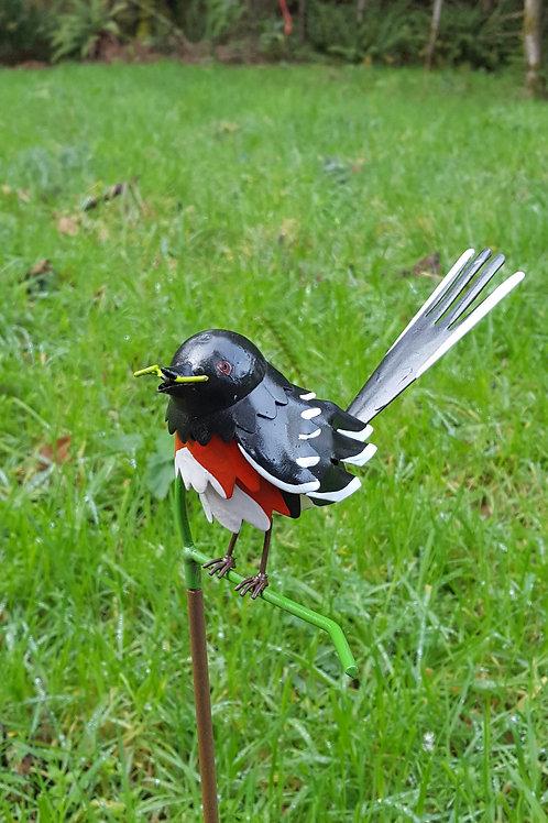 BIRD: Eastern Towhee