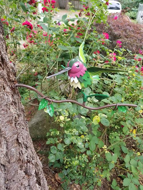 BRANCH: Anna's Hummingbird