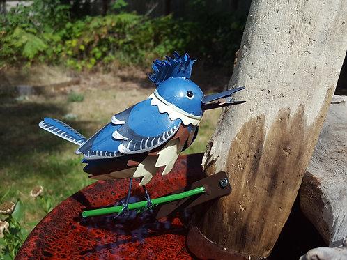 SB: Kingfisher on Short Branch