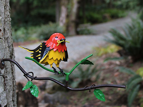 BRANCH: Western Tanager