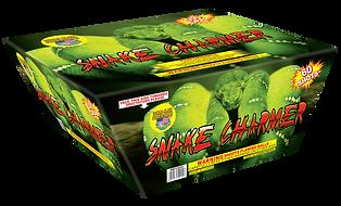 Snake Charmer.png
