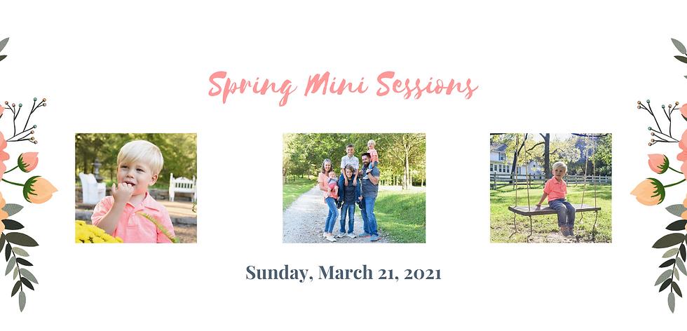 Spring Minis-3.png