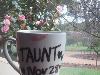 Taunt: A New Release Coming Soon!