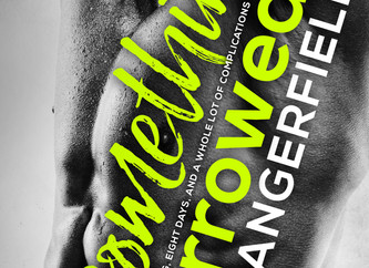 Something Borrowed Cover Reveal!