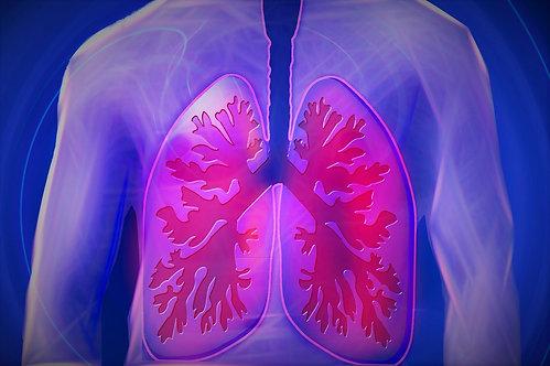 Bronchitis Roll-On