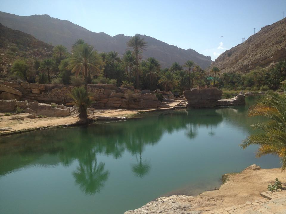 Turquois Blue Oasis Pools