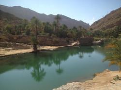 Emerald Oasis Pools