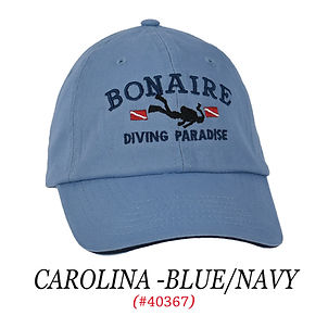 #1041-CAROLINA -BLUE.jpg