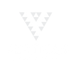 VERTICES LOGO.png
