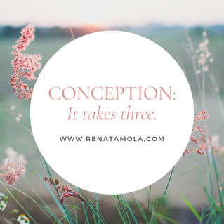 Conception: It Takes Three.
