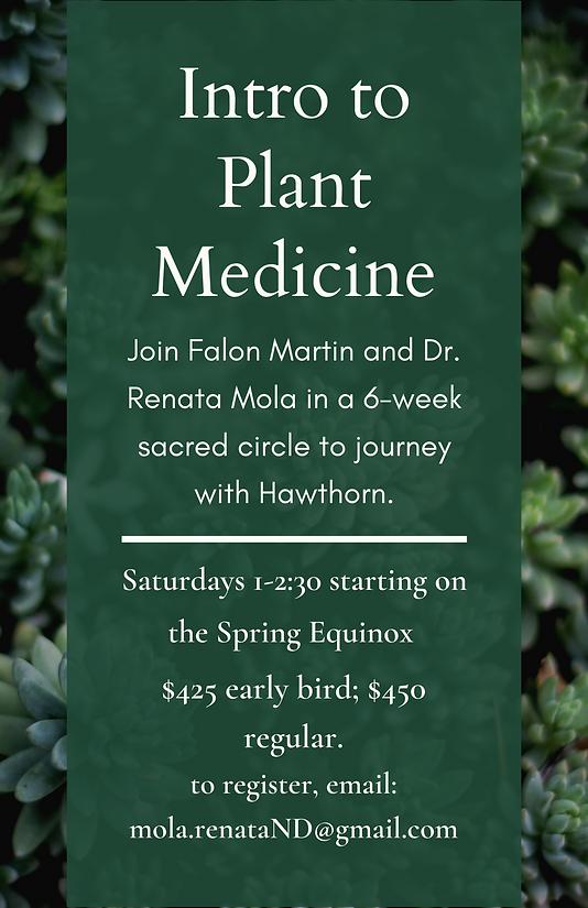 Blue Flower Plant Show Flyer.png