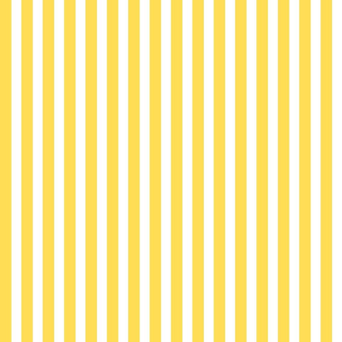 yellow stripe.jpg