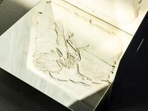 Non-site V (Archaeopteryx/Mirror-Travels)
